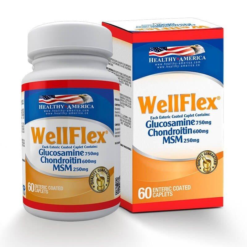 WellFlex Glucosamine Chondroitin MSM