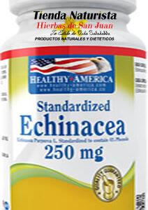 Echinacea 250mg Healthy America